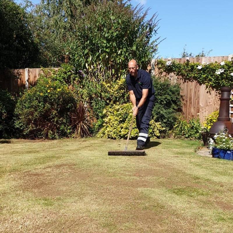 lawntec lawn seeding in mansfield